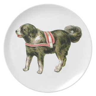 Vintage Circus Dog Plate