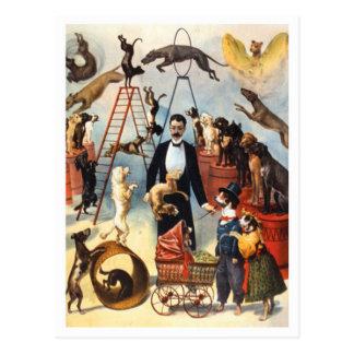 Vintage Circus Dog Trainer Postcard