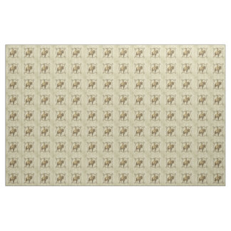 Vintage Cowgirl Western Rodeo Fabric