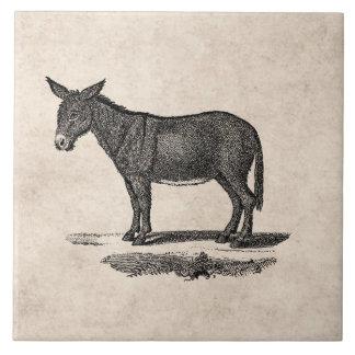 Vintage Donkey Illustration -1800's Donkeys Large Square Tile