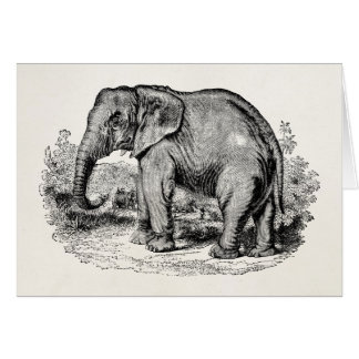 Vintage Elephant Personalised Elephants Animals Card