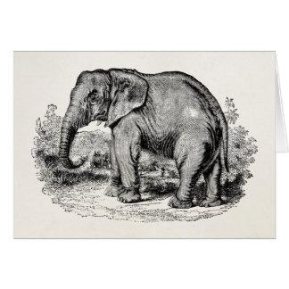 Vintage Elephant Personalized Elephants Animals Card