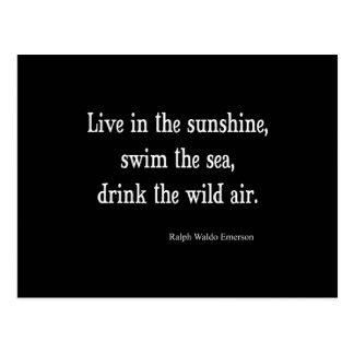 Vintage Emerson Live in Sunshine Quote Postcard
