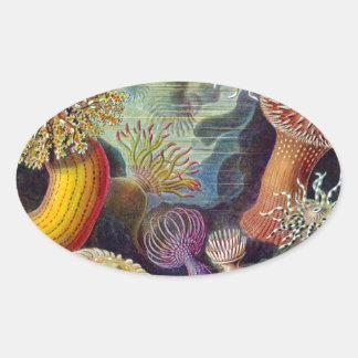vintage-Ernst-Haeckels-Kunstformen-Mulit Dark Oval Sticker