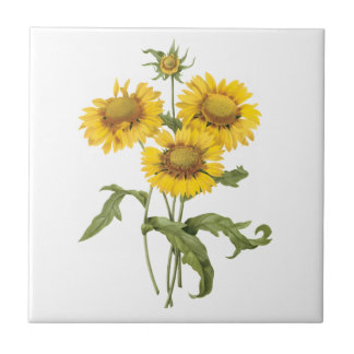Vintage Floral Blanket Flower Sunflower by Redoute Ceramic Tile