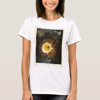 Vintage Flower Night-Blooming Cereus Thornton T-Shirt
