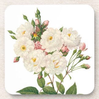 Vintage Flowers Floral Blush Noisette Rose Redoute Coaster