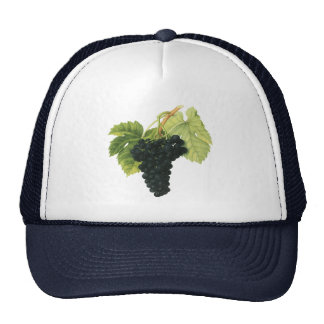 Vintage Food Fruit, Red Wine Organic Grape Cluster Mesh Hats