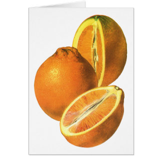 Vintage Foods Fruit Organic Fresh Healthy Oranges Cards