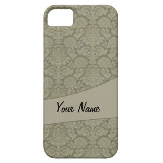 Vintage French background iPhone 5 Cases