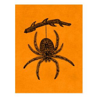 Vintage Halloween Spider Orange Background Spiders Postcard