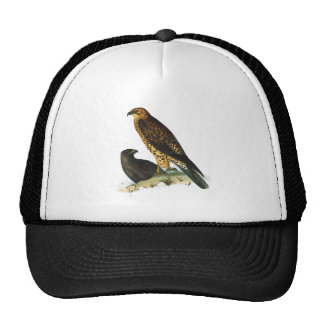 Vintage Hawks Illustration Cap
