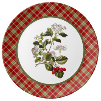 Vintage Hawthorn with Rustic Red and Green Plaid Porcelain Plate