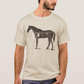 VINTAGE HORSE ANATOMY PRINT T-SHIRT Equestrian