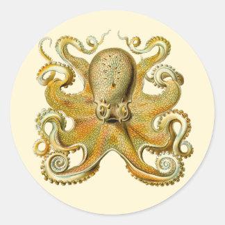 Vintage Kraken, Octopus Gamochonia, Ernst Haeckel Classic Round Sticker