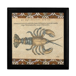 Vintage Lobster illustration Gift Box