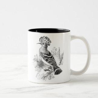 Vintage Madagascar Hoopoe Bird Personalized Birds Two-Tone Coffee Mug