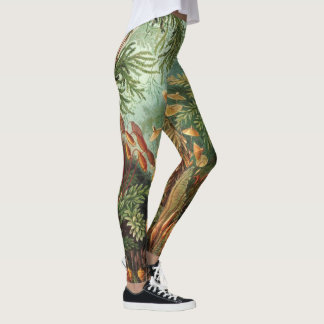 Vintage Moss Plants by Ernst Haeckel, Muscinae Leggings