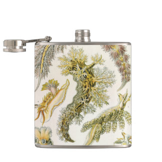 Vintage Nudibranchia, Sea Slugs by Ernst Haeckel Flask