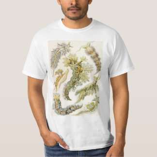 Vintage Nudibranchia, Sea Slugs by Ernst Haeckel T-Shirt