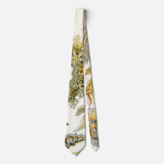 Vintage Nudibranchia, Sea Slugs by Ernst Haeckel Tie