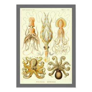 Vintage Octopus Squid by Ernst Haeckel Invitation