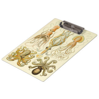 Vintage Octopus Squid Gamochonia by Ernst Haeckel Clipboard