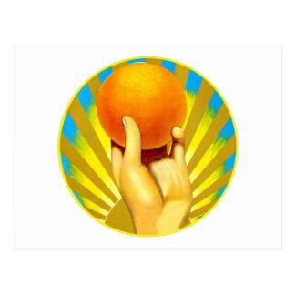 Vintage Oranges Orange Sunshine Citrus Fruit Postcard