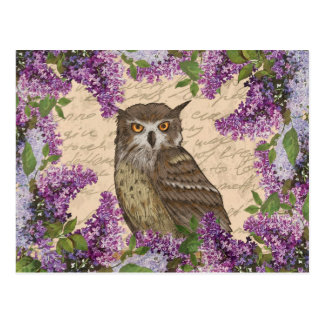 Vintage owl and lilac postcard