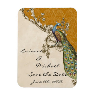 Vintage Peacock & Etchings Save the Date Rectangular Photo Magnet