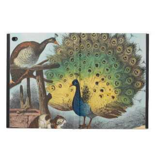 Vintage peacocks and a cat powis iPad air 2 case