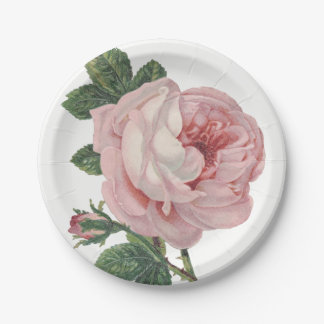 Vintage Pink Rose Flowers Shabby Chic Wedding Paper Plate