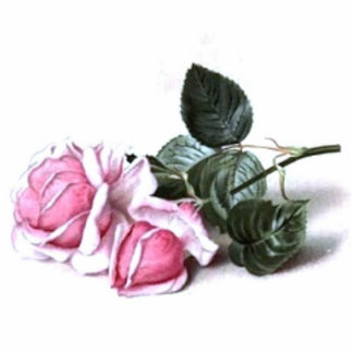 Vintage Pink Roses Standing Photo Sculpture