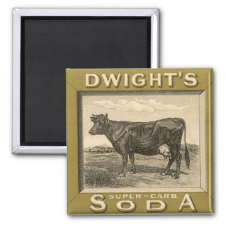 Vintage Product Label, Dwight's Bicarbonated Soda Square Magnet