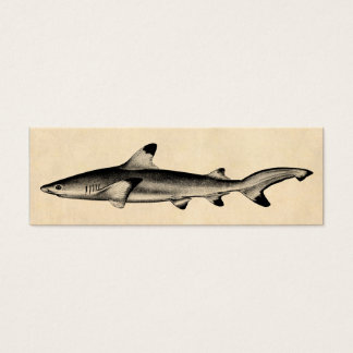 Vintage Reef Shark Illustration - Black Tipped Mini Business Card