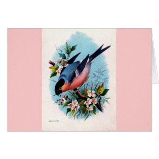 Vintage Retro Bird on a Branch Card