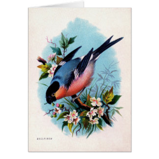 Vintage Retro Bird on Branch Card