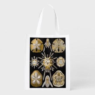 Vintage Sand Dollars Sea Urchins by Ernst Haeckel Grocery Bags