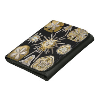 Vintage Sand Dollars Sea Urchins by Ernst Haeckel Leather Tri-fold Wallet
