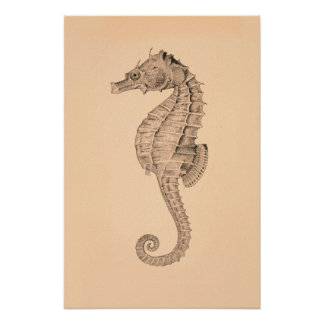 Vintage Sea Horse Diptych II Poster