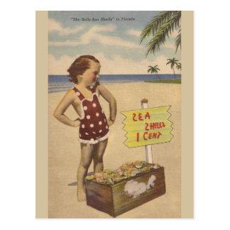 Vintage Sea Shells Florida Post Card