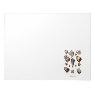 Vintage Sea Shells Personalised Retro Auger Shell Notepad