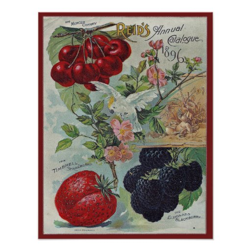 vintage seed catalog cover print