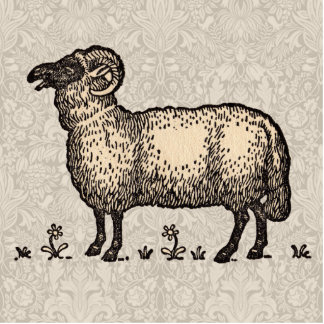Vintage Sheep Farm Animal Illustration Standing Photo Sculpture