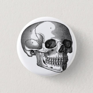 Vintage Skull Diagram Goth button pin