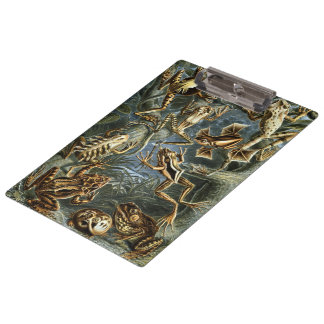 Vintage Toads and Frogs Batrachia by Ernst Haeckel Clipboard