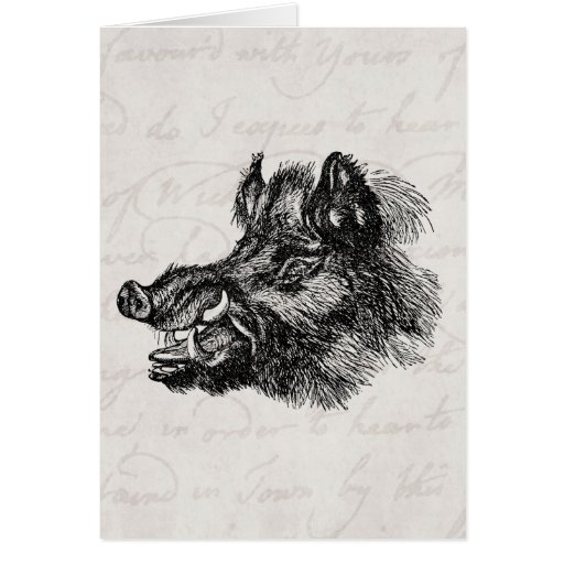 Vintage Vicious Wild Boar w Tusks Template Greeting Cards