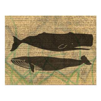 Vintage whale nautical rustic beachy postcard