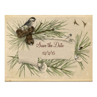 Vintage, Winter,  Country Wedding, Save the Date Postcard