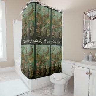 Vintage Worms Annelids Chaetopoda by Ernst Haeckel Shower Curtain